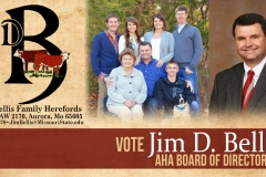 Jim Bellis VOTE