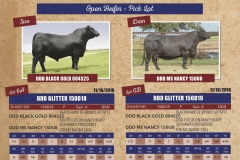 Southern Excellence Sale Round 2 8