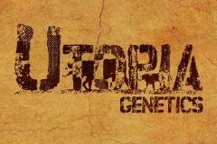 Utopia Genetics